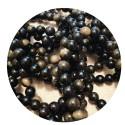 Les Obsidiennes ~ Introspection